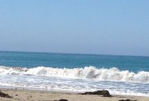 Beach life / Living the beach life