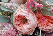 Inspo kytky