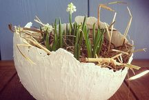 Bloemschikken / Kerst, Pasen, voorjaar