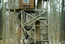 My Future Treehouse