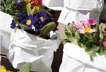 Pic-nic di Primavera / E' arrivata la primavera! Ogni cosa si risveglia. I fiori sbocciano con le loro forme e colori. Il clima diventa più caldo; quale occasione migliore per un pic-nic all'aperto e in compagnia?