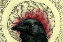 Illustrations and Inspirations / by Sagebrush & Indigo