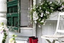 porch and patio / by Mary Fluaitt