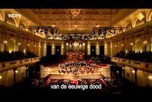 Muziek / Prachtige muziekstukken en/of uitvoeringen