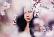 Kirschblüten photography