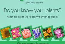 Gardening Quizes