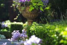 Gärten und Blumen