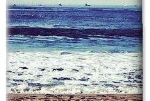 46 Days In Redondo Beach