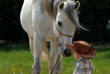 Маленький ковбой