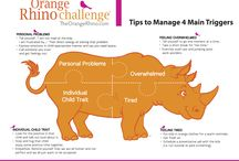 Orange Rhino Challenege!
