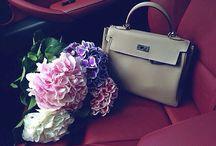 Want | сумка