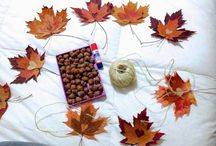 Crafts With Chestnut And Other Natural Ingredients, Creates A Beautiful Autumn Atmosphere