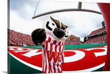Badger Sports / Follow the UW Badgers, and see the fun in Madison during the games.