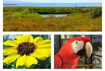 Nature Centers in Southern California / A comprehensive list of all the Nature Centers in Southern California from Santa Barbara to San Diego.