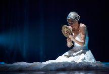 Balletto di Roma - Il lago dei cigni / ParmaDanza 2015, Info: http://www.teatroregioparma.it/Pagine/Default.aspx?idPagina=30