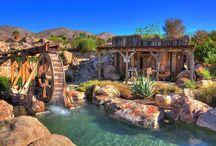 Disney backyard