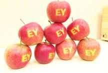 EY Care & Wellness / EY Care & Wellness -program zrównoważonego rozwoju dla pracowników EY Polska