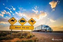 Truckin Life / by Jenny Orcher
