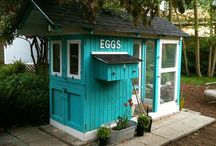 Chicken Coops / by Carolyn Simpson