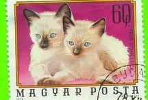 CAT STAMPS / Les chats et les timbres