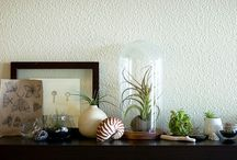Home displays & collections