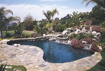 Pool landscaping and backyard design