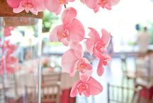 Center Pieces with Orchids / Orchids as beautiful centerpieces