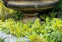 My little garden / by andrea callanan (beardshaw)