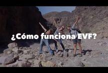 EVF Videos