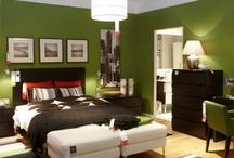 Living Room Color.  / by Teri Ann Duffy