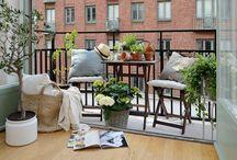Décorer son Balcon / un jardin en ville, décorer vos petits espaces avec des plantes. #balcon #jardin #jardinage #home #deco #plantes #fleurs