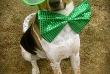 St. Patricks Day Eyes