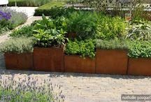 Landscape: planters