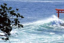 surf japan