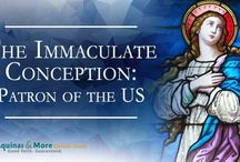 Immaculate Conception / 0