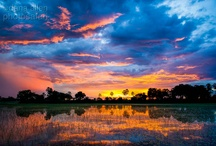 African Splendor: Stunning Sunrises, Sunsets & Scenery  / Get a taste of the beautiful scenery of African sun ups and sun downs!