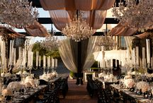 Reception Decor / Plush, texture, color, theme