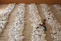Mass graves Iraq