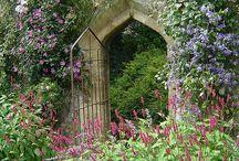 Garden design / Tuin etc