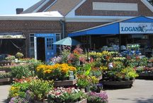 Logan's Trading Company / We have a great selection both indoors and out!  / by Logan Trading Company Logan's