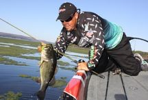 Fishing in North Alabama / North Alabama has eight beautiful lakes to fish for bass, crappies, and more! http://www.northalabama.org/explore/fishing