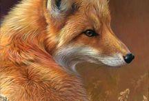 Art Inspo - Animals