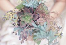 Flowers / Flowers photography, flowers arrangements, flowers garden.