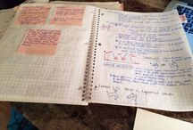 school tips, organization, etc. / by Kamryn Deshotels