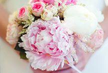 Bouquet/couleurs