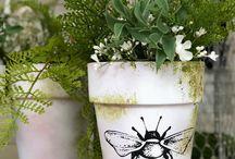 Pots Plants Florals Decor