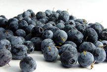 Acai Berries Benefits
