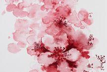 cseresznyevirag