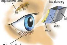 Øye relaterte ting