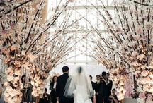 Wedding Decor Inspiration ** Decoração de Casamento / Decoração de casamento